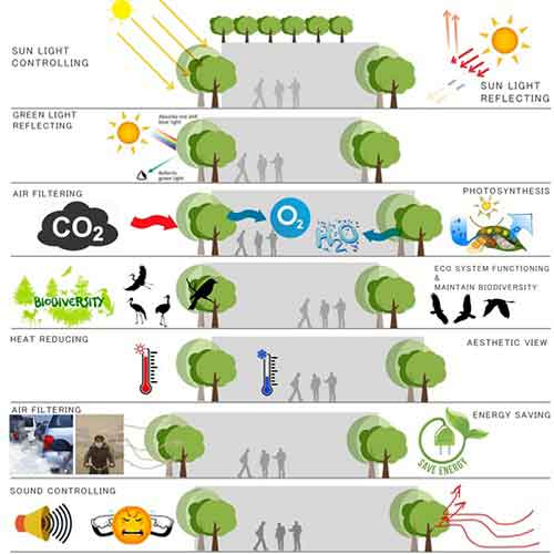 Impact of Vertical Landscape in Urban Spaces